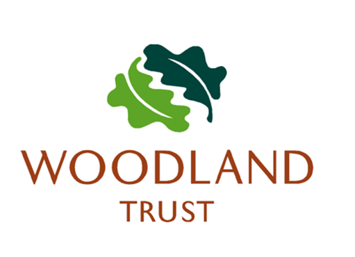 Woodland Trust Charity Christmas Cards