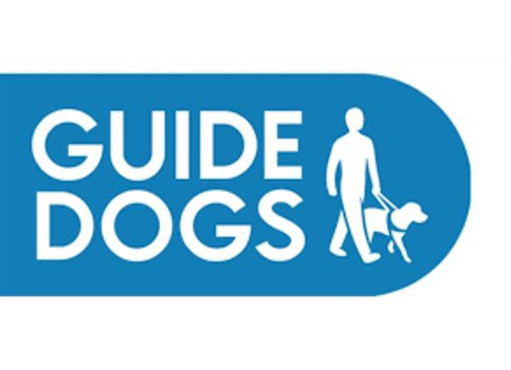 The Guide Dogs for the Blind Association Charity Christmas Cards