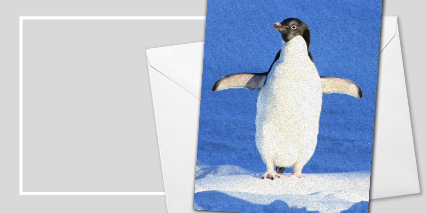 Penguin Christmas Cards