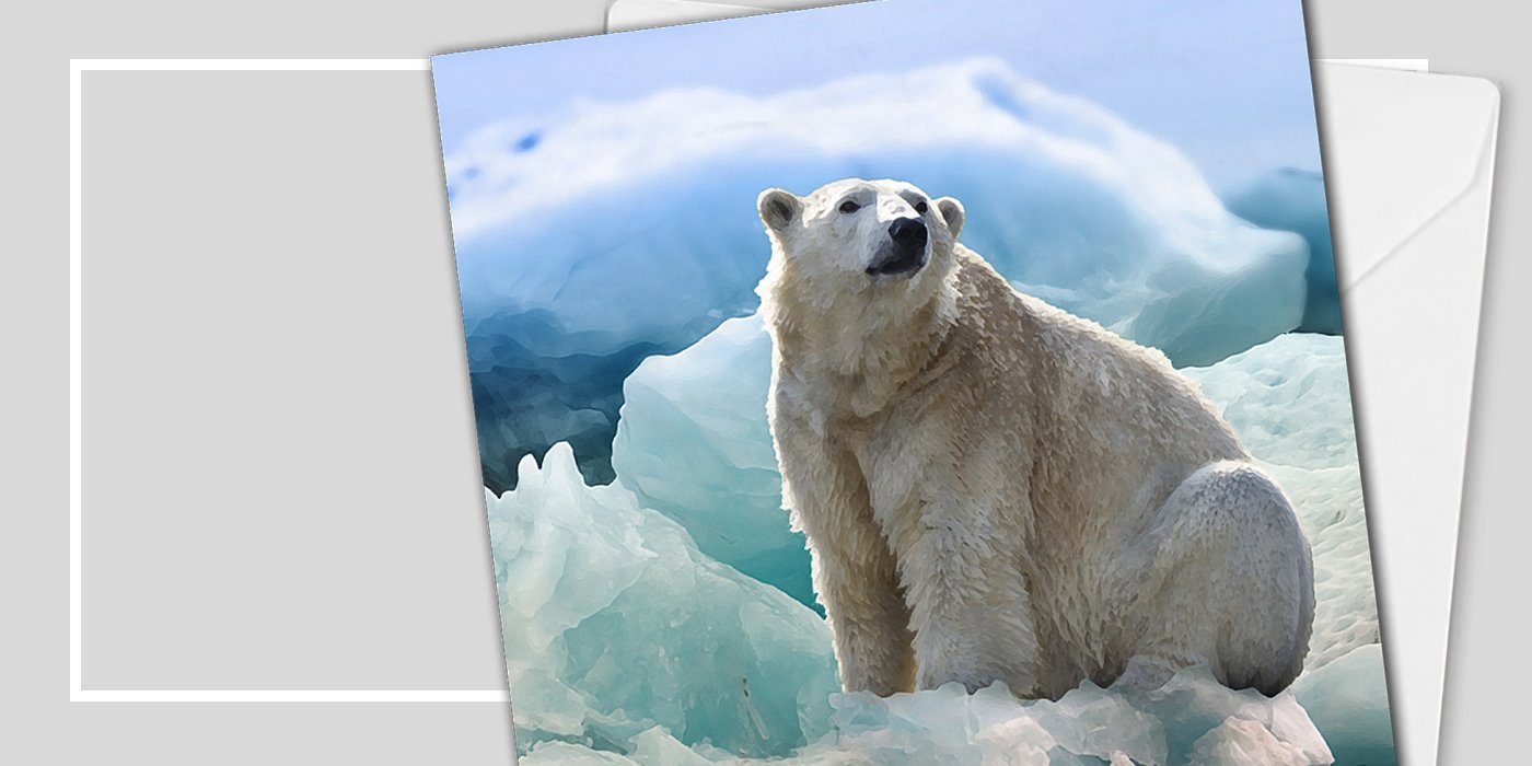 Polar Bear Christmas Cards