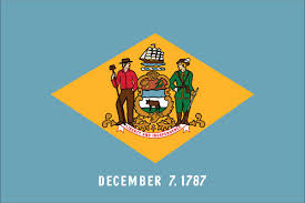 Delware State Flag