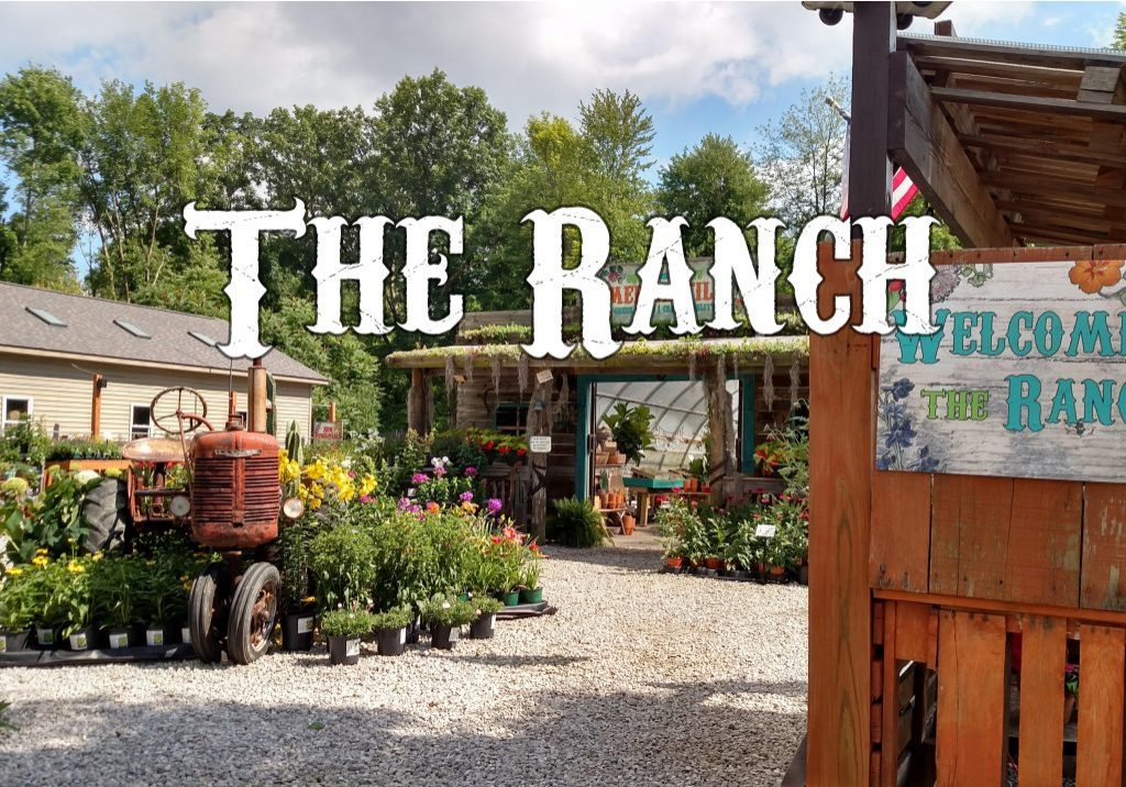 Visit the Ranch