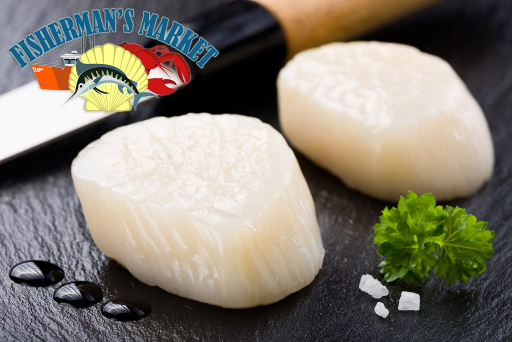 Delicious Sea Scallops