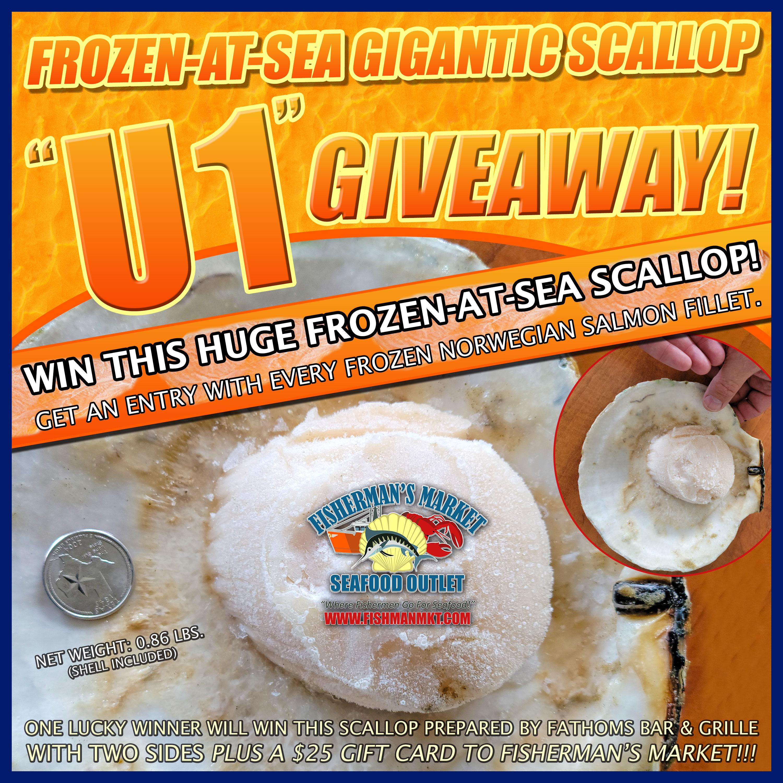 Gigantic Frozen-At-Sea 'U1' Scallop Giveaway
