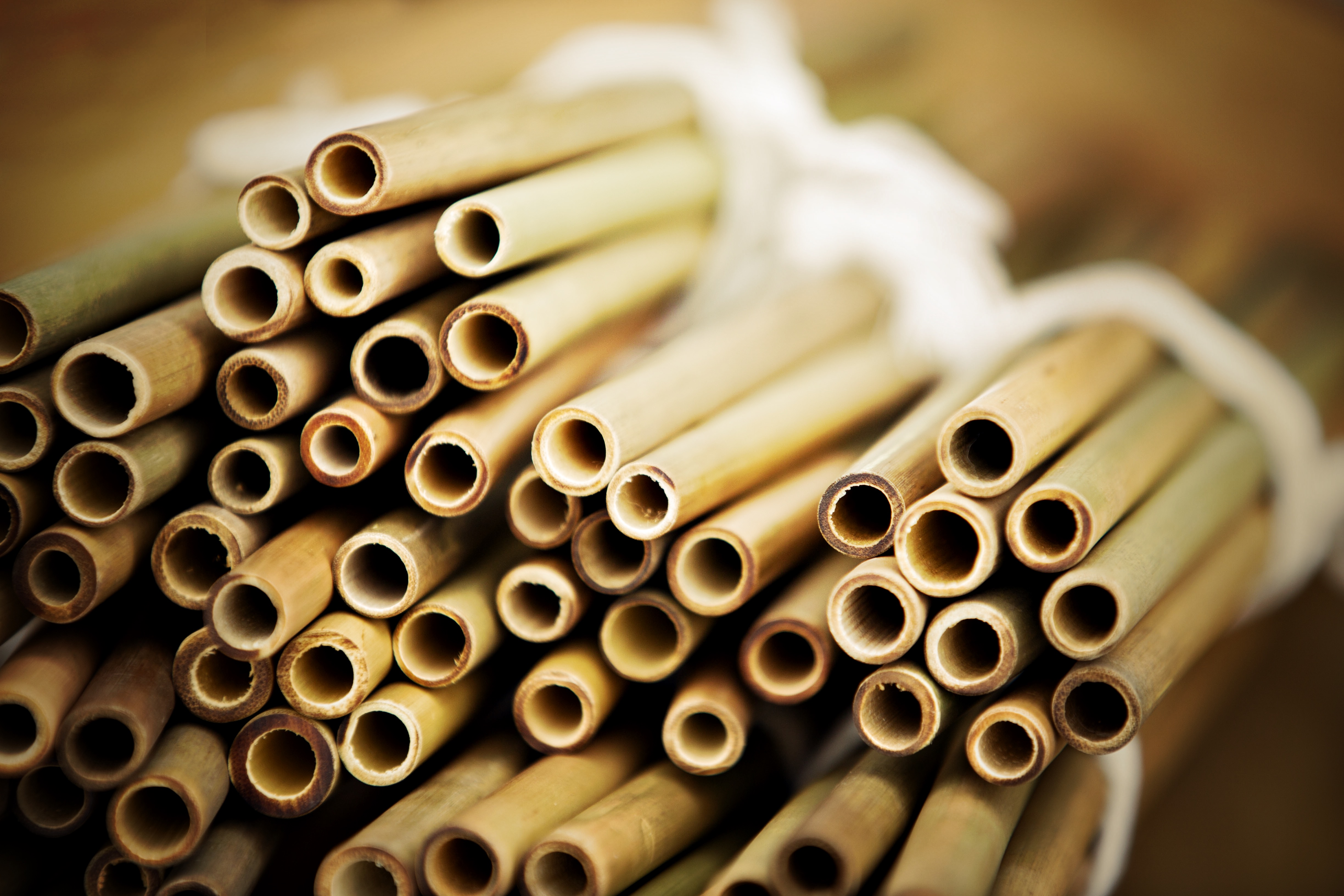 Recycling bamboo straws