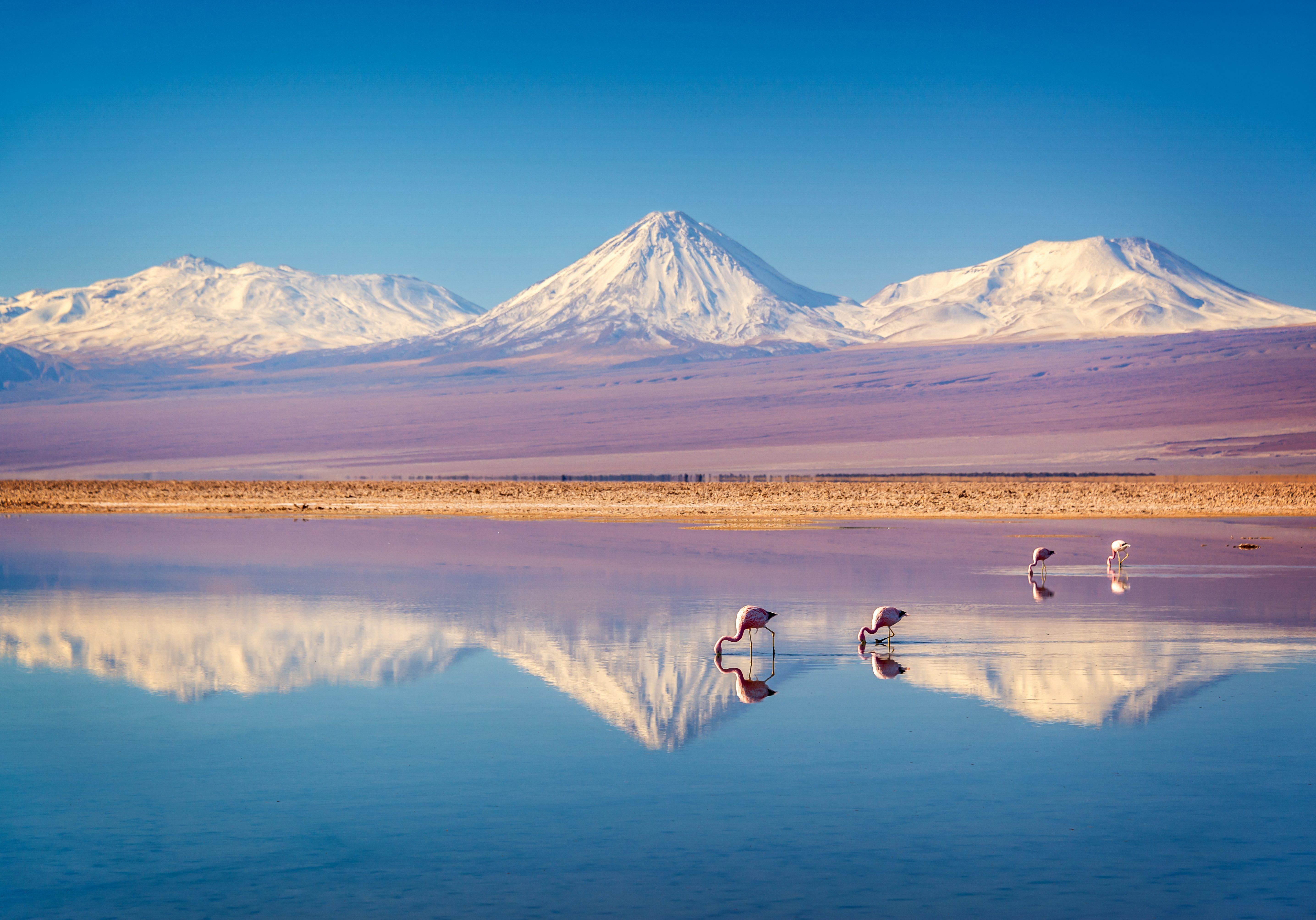 Atacama salar, Chile