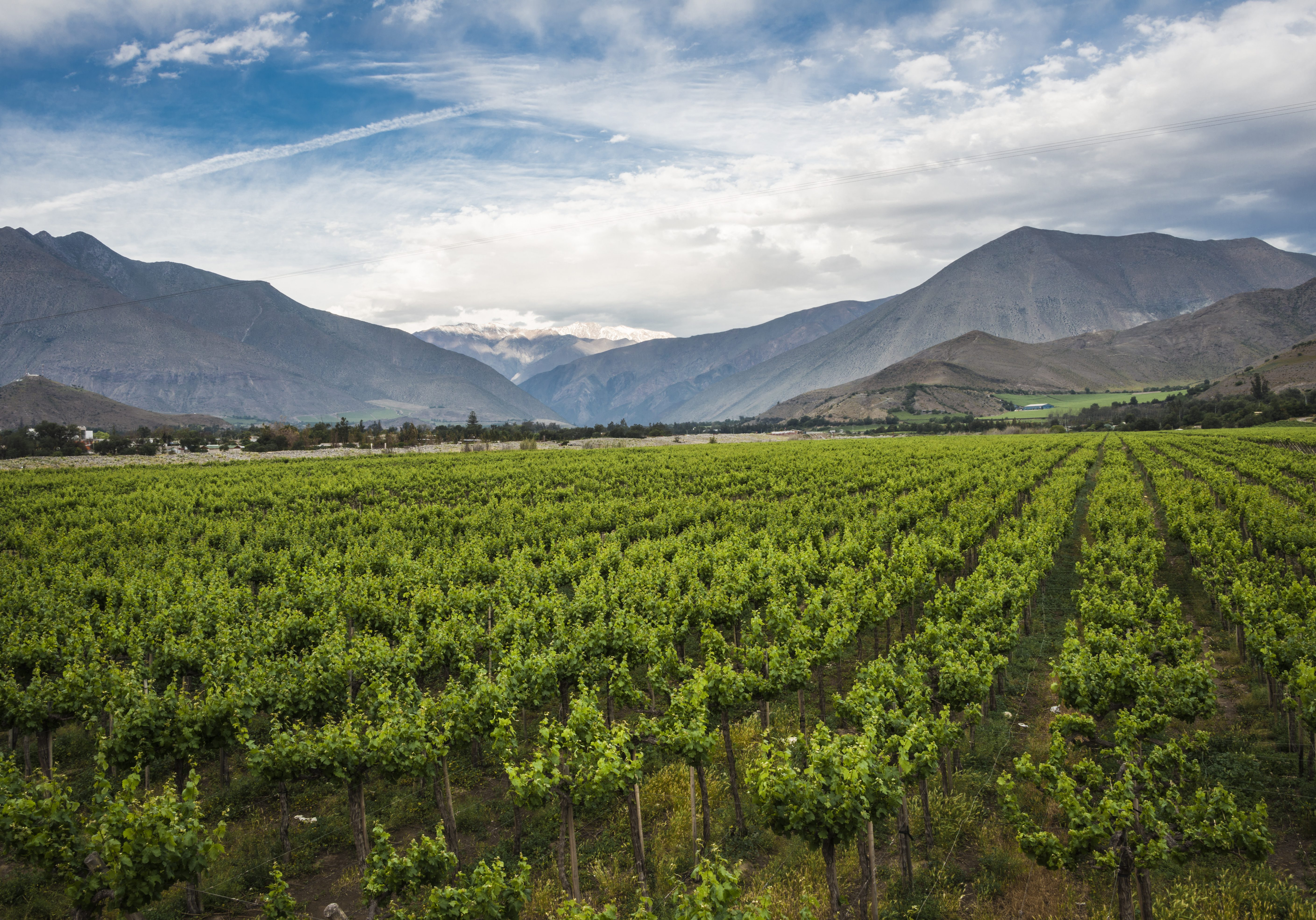 Chile, Andes, Wine