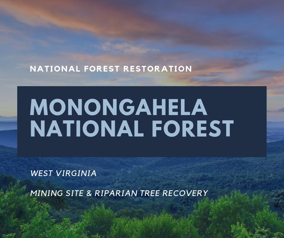 USNF_Monongahela