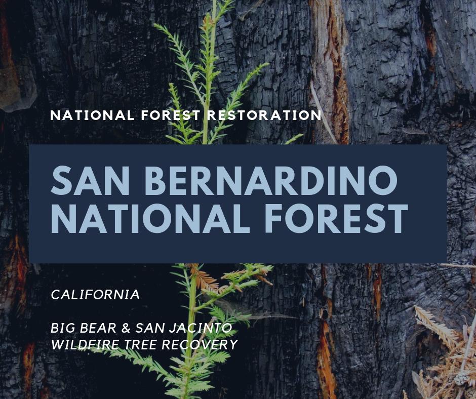 USNF_San Bernardino