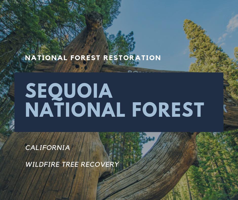 USNF_Sequoia