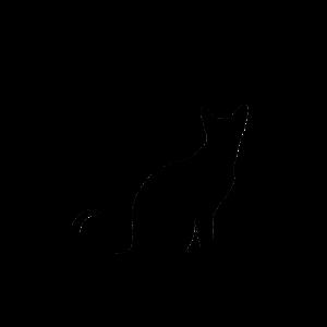 logo-new-notext