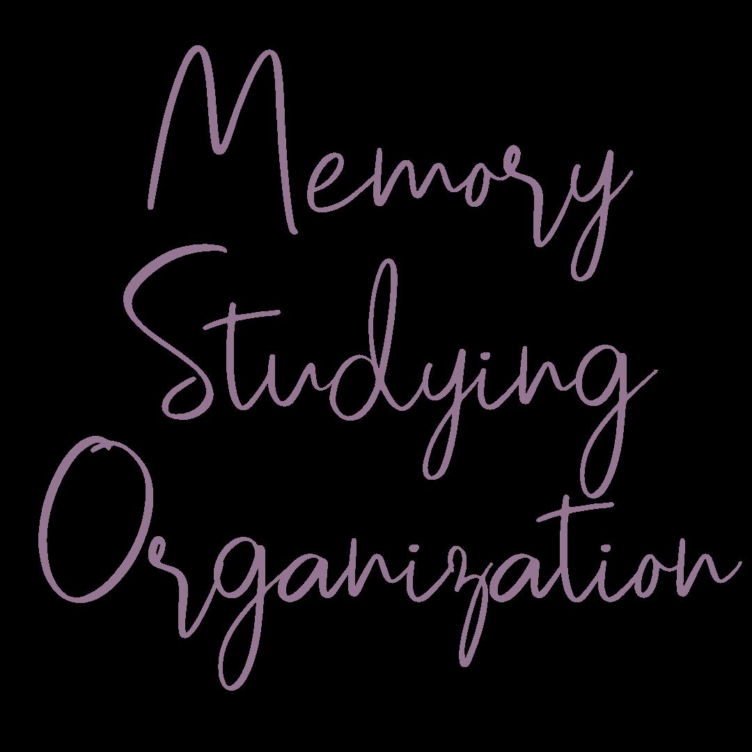 Memory Studying Organization