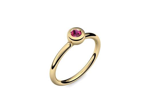 Ring Slick and Shiny | Gelbgold 585 | Rubin | 319 €