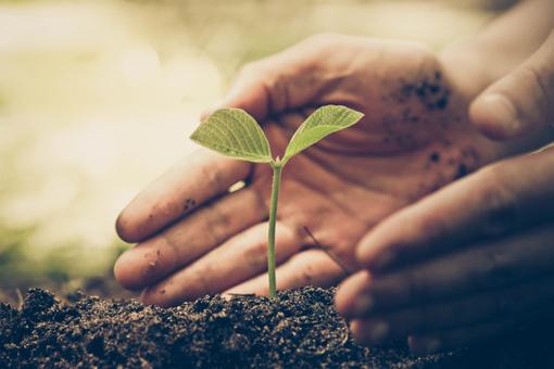 philosophie_nachhaltigkeit