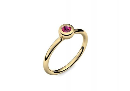 Ring Slick and Shiny | Gelbgold 585 | Rubin | 319 €