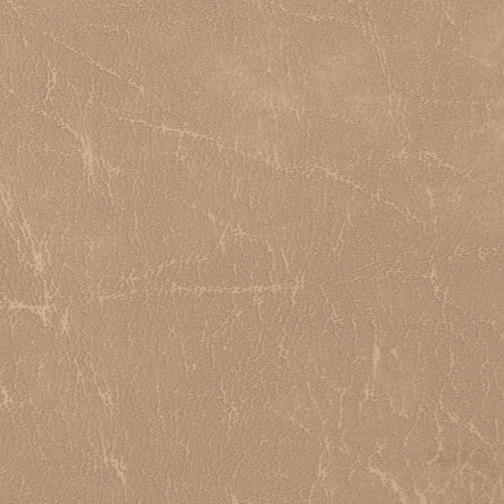 05 Carrara-parchment-cropped