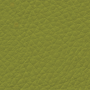 12-GEN-1906 LEMON GRASS