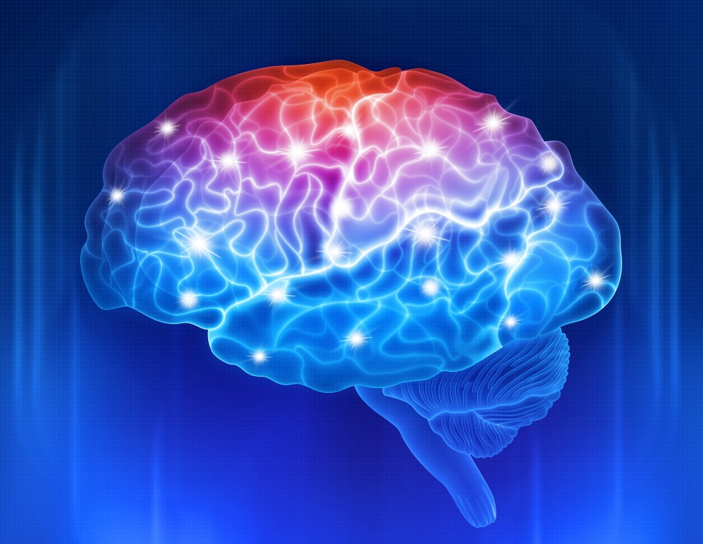 Brain Function Recovery
