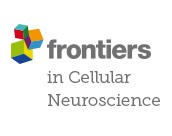 https://gravity-apps.com/cmspro/wp-content/uploads3914//2021/04/Frontiers-in-Neuroscience.jpg