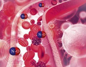 Nitric Oxide 434 x 336_