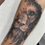 Dave_lion