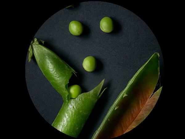 Vegan landing page peas